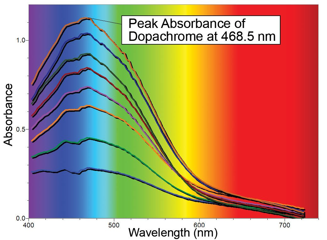 Full wavelength scans showing the conversion of DL-DOPA to dopachrome over a 2 minute period